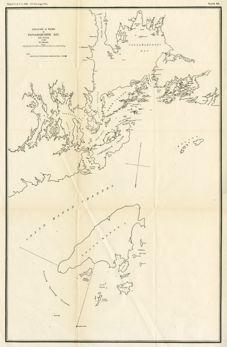Location of Weirs in Passamaquoddy Bay and Vicinity in 1893